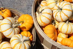Baskets full of miniature gourds Royalty Free Stock Images