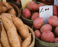 Baskets full of potatoes Royalty Free Stock Image
