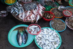Baskets full of seafood at the wet market Royalty Free Stock Photo