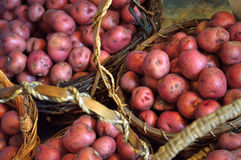 Baskets full of small red new potatoes Royalty Free Stock Photography