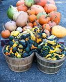 Baskets of gourds and pumpkins Royalty Free Stock Images