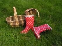Baskets and gumboots. Two baskets and white-dotted red gumboots on the green grass Stock Photos