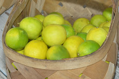 Limes In A Basket. Baskets of limes at a roadside fruit and vegetable stand royalty free stock photo