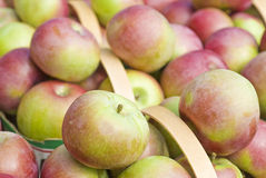 Baskets of Macintosh Apples Royalty Free Stock Images