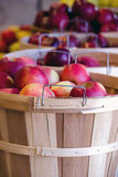 Baskets of Michigan apples Royalty Free Stock Images