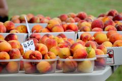 Baskets of peaches Royalty Free Stock Photography