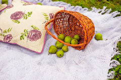 Baskets of pears Stock Photo