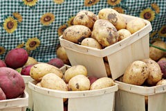 Baskets of Potatoes Stock Images