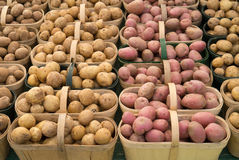 Baskets of potatoes Royalty Free Stock Photography