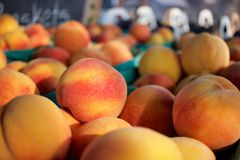 Baskets of ripe Okanagan peaches for sale in farmer's market Stock Photos