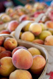 Baskets Of Ripe Peaches For Sale At Farmers Market royalty free stock photo