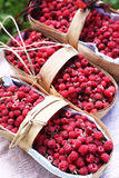 Baskets with ripe red raspberries Stock Photography