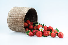 Baskets and strawberries Royalty Free Stock Photography