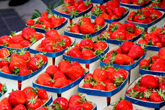 Baskets strawberries Stock Photography