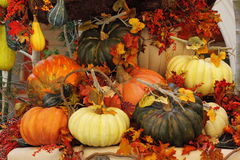 The baskets and vases with pumpkins Royalty Free Stock Photo