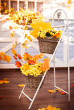 Baskets with yellow leaves and autumn flower Stock Images