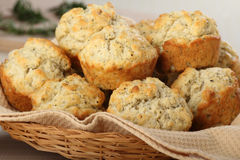 Baskey of Muffins Stock Image