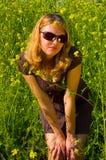 basking солнце Стоковые Изображения RF