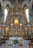 Basílica da catedral de Notre Dame, Ottawa Foto de Stock Royalty Free