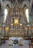 Basílica de la catedral de Notre Dame, Ottawa Foto de archivo libre de regalías