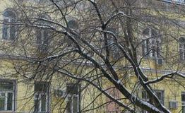 Basmanny sąd rejonowy, sąd okręgowy Moskwa w zimie Fotografia Stock