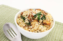 Basmati rice Royalty Free Stock Image