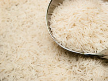 Basmati rice and ladle. Uncooked basmati rice in a metallic ladle. Shallow depth of field Royalty Free Stock Images