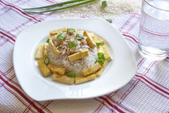 Basmati rice with roasted pieces of tofu Stock Images