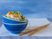 Basmati Rice with vegetables , Chinese concept royalty free stock images