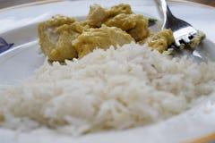 Basmati ris med senapsgult sås Royaltyfri Foto