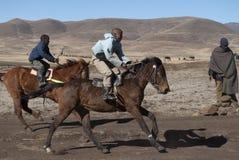 Basotho deux emballant des poneys Photos libres de droits