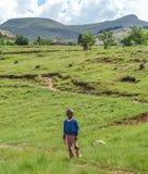 Basothopojke, Lesotho Royaltyfria Bilder