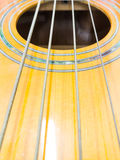 Basowa gitara, bas akustyczny Zdjęcia Stock
