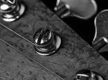Basowej gitary nastrajanie i headstock kołkujemy zbliżenie obrazy stock