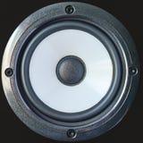 Basowy fachowy głośnik z śrubami, zakończenie w górę odosobnionego na czarnym tle zdjęcia royalty free
