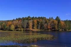 Basowy jezioro Obrazy Stock