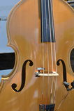 Basowy skrzypki Obrazy Royalty Free