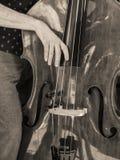 Basowy skrzypki Strumming Zdjęcie Stock