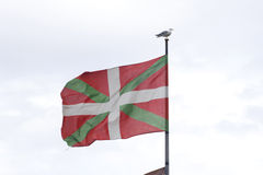 Basque country flag, with a sea gull on the pole. Basque country flag flying on the wind, with a sea gull standing on the pole Royalty Free Stock Images