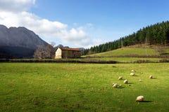 Basque farm house Stock Photos