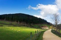 Basque farmhouse with sheep Stock Photo