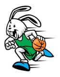 Basquetebol do jogo do coelho Foto de Stock