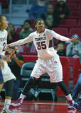 2014 basquetebol do NCAA - o basquetebol das mulheres Imagem de Stock Royalty Free
