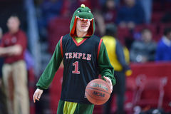 2015 basquetebol do NCAA - Templo-Cincinnati Foto de Stock Royalty Free