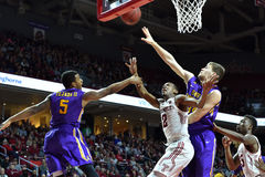 2015 basquetebol do NCAA - Templo-ECU Imagem de Stock Royalty Free