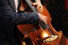 The bass. Arms, hands and fingers play a stand-up bass royalty free stock photos