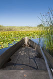Bass Boat Stock Photography