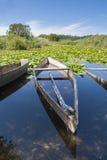 Bass Boat. Tree old bass boats on a swamp with nenufars stock photo
