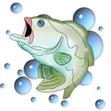 Bass and Bubbles. Colorful Illustration of a green bass against a background of blue bubbles Stock Image