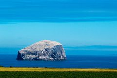 Bass-Felsen Schottland Vereinigtes Königreich Europa stockfotografie
